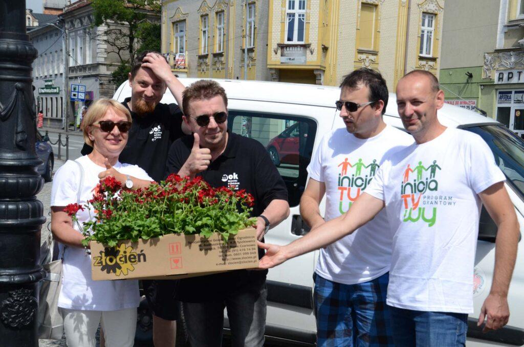 MOK Brzesko rewitalizacja zieleni na brzeskim rynku